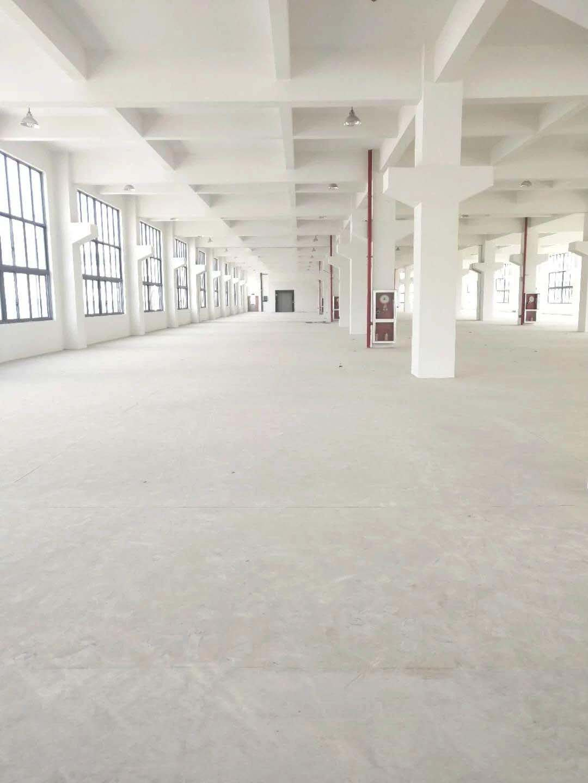 (出租) 盐盘标准厂房15000平地面一楼3000平形象好